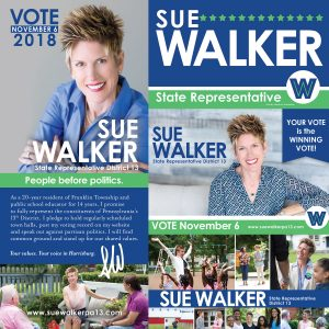 Sue Walker State Rep Campaign Print Materials